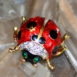 Jewelry - Adorable Ladybug Lapel Pin in Red Green Black